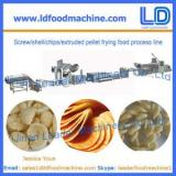 Screw/shell/chips/extruded pellet frying food process line