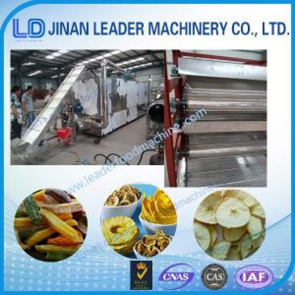 Drying Oven Belt Dryer food industry equipment machineries #1 image