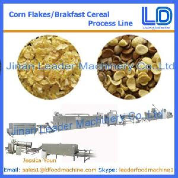 CORN FLAKES/BREAKFAST CEREAL PROCESS LINE #1 image