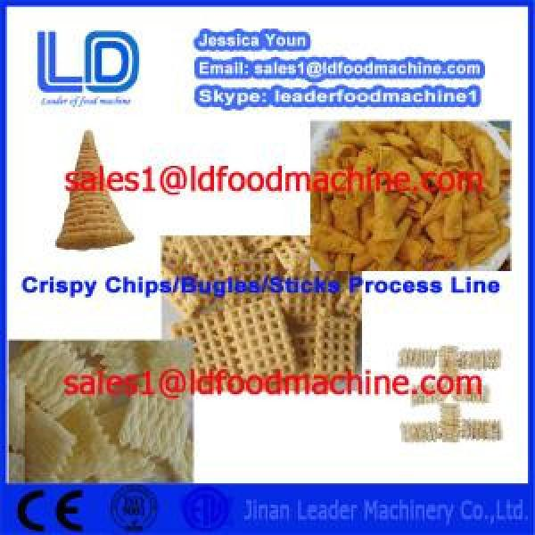 304 STAINLESS STEEL SALAD/CRISPY CHIPS/BUGLES SNACKS PRODUCTION LINE #1 image