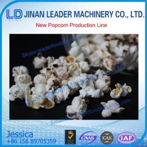 Jinan Leader Popcorn production line #1 image