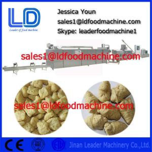 TVP TSP Soya bean protein food processing Equipment #1 image